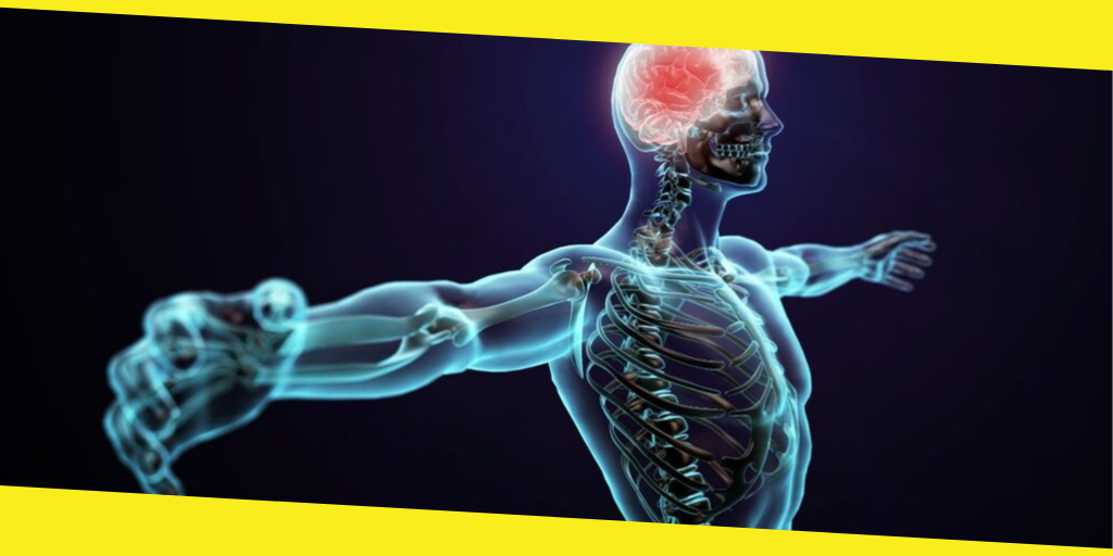 Taking Care of Your Nervous System